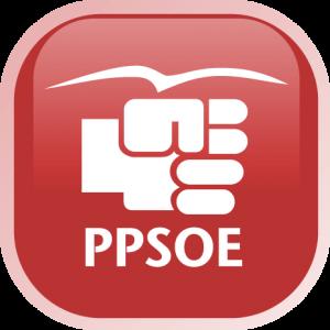 ppsoe-300x300
