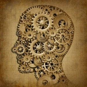 human brain int
