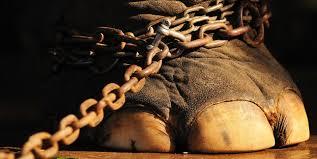 pata elefante cadenas2
