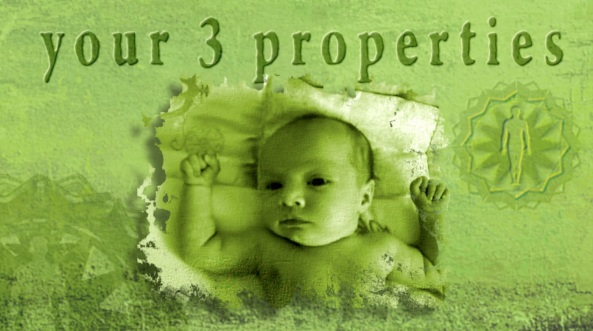 3 propiedades