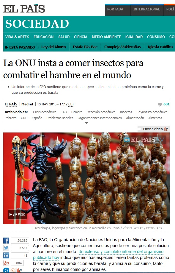 CAPTURA ONU INSECTOS
