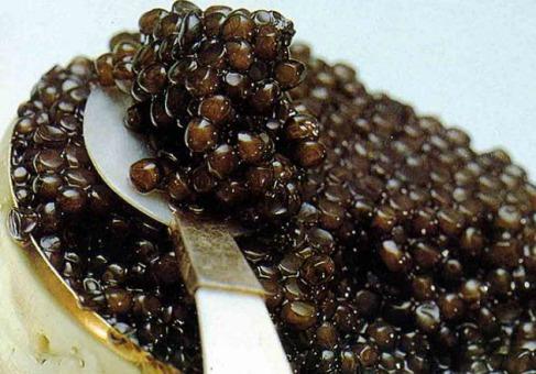 caviar_caviar1