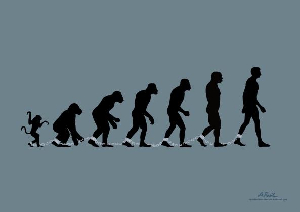 evolucion s