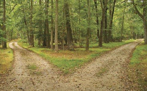 Dos-caminos