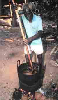 Habitante de Bougainville elaborando aceite de coco