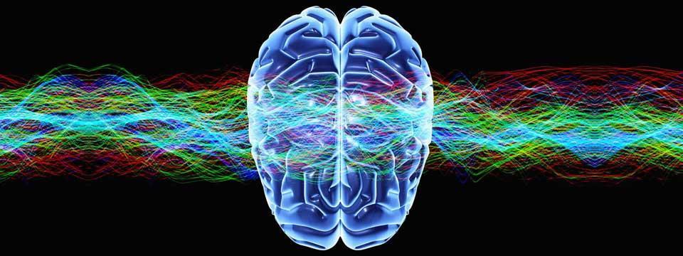 imgcog neuro1 960 360 c - FABRICANDO LA SOCIEDAD ADICTA
