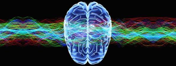 imgcog-neuro1.960.360.c
