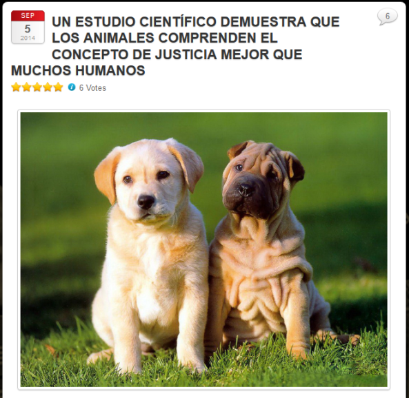 captura justicia animales