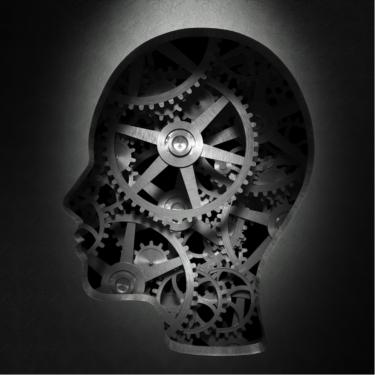 head-brain-gears-