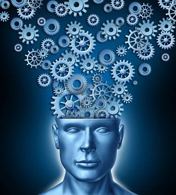 gears-on-the-brain